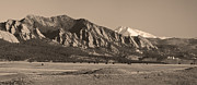 Sepia White Nature Landscapes Prints - Flatirons and Snow Covered Longs Peak Panorama in Sepia Print by James Bo Insogna