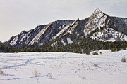 Flatirons Posters - Flatirons Winter Landscape Boulder Colorado Poster by James Bo Insogna
