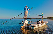Fly Casting Posters - Flats Fishing Sarasota Bay Redfish Poster by Jay Campbell
