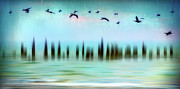 Dan Carmichael Framed Prints - Flight - a Tranquil Moments Landscape Framed Print by Dan Carmichael