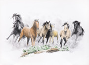 Wild Horses Drawings - Flight For Freedom by Joette Snyder