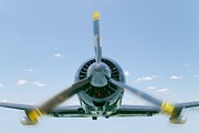 Airplane Radial Engine Posters - Flight in color Poster by Rudy Umans