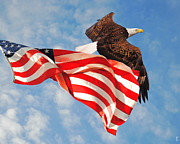 Flag Of Usa Photo Prints - Flight of Freedom Print by Jai Johnson