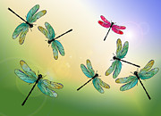 Dragonflies Art - Flight of the Scarlet Lady by Jenny Armitage