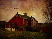 Barns Digital Art - Flight Over the Barn by Pamela Phelps