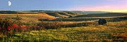 Panoramic Metal Prints - Flint Hills Shadow Dance Metal Print by Rod Seel