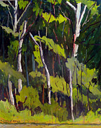 Charlie Spear - Flint Pits in the Woods...