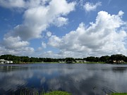 Polk County Florida Photos - Floating clouds over the lake by Zulfiya Stromberg