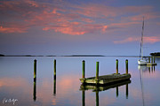 Floating Docks Print by Phill  Doherty