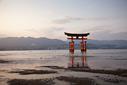 Floating Torii Framed Prints - Floating Torii Gate of Itsukushima Miyajima Framed Print by Ei Katsumata