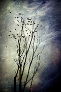 Blackbird Digital Art Posters - Flock Of Birds In Silhouette Poster by Christina Rollo
