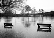 Park Benches Photo Originals - Flood by David Resnikoff