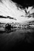 Mangrove Forest Photo Prints - Flooded Grasslands And Mangrove Forest In The Florida Everglades Print by Joe Fox