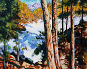 Colorado Mountain Stream Paintings - Flooded Stream - Colorado by John Lautermilch