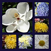 Carolyn Ricks Metal Prints - Floral Collage Metal Print by Carolyn Ricks