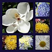 Floral Collage Print by Carolyn Ricks