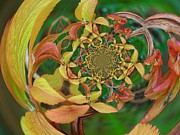 Photo Manipulation Originals - Floral Digi Manip 6 by Gene Cyr