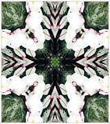 Struckle Prints - Floral Fantasy Print by Kathleen Struckle