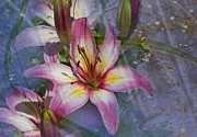 Barbara Smith Metal Prints - Floral Fantasy V Metal Print by Barbara Smith