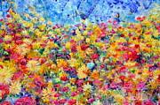 Regina Valluzzi - Floral Fireworks