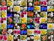 John Tidball  - Floral Patchwork