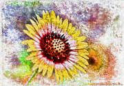 Deborah Benoit - Floral Rainbow Fun