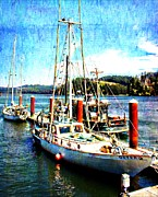 Sarasota Digital Art Posters - Florence Oregon Sailboats Poster by Barbara Chichester