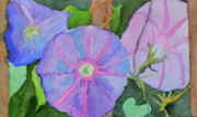 Morning Glories Paintings - Florences Morning Glories by Beverley Harper Tinsley