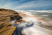 Florida Landscape Photography Prints - Florida Beach St Augustine Washington Oaks State Park Print by Dave Allen