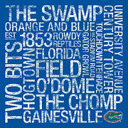 Florida Gators Posters - Florida College Colors Subway Art Poster by Replay Photos