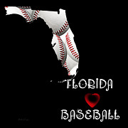 Abstract Map Posters - Florida Loves Baseball Poster by Andee Photography