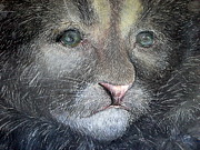 Cute Kitten Originals - Florida Panther Cub by Jan Lowe