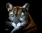 Panther Paintings - Florida Panther Jeremiah by Adele Moscaritolo