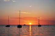 Palm Harbor Posters - Florida Sailboat Sunset Poster by Bill Cannon