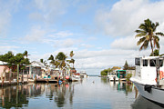 Florida Keys Photos - Florida Spring Day by Deborah Benoit