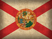 Florida Art Framed Prints - Florida State Flag Art on Worn Canvas Framed Print by Design Turnpike