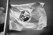 Florida State Metal Prints - Florida State Flag Flying Usa Metal Print by Joe Fox