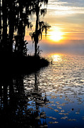 Debra Vronch Prints - Florida Sunrise Print by Debra Vronch
