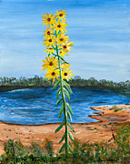 Susan Abrams - Flower Amidst Drought