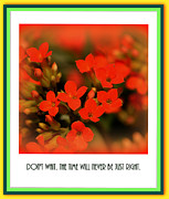 Arty Framed Prints - Flower and Time Quote Framed Print by Susanne Van Hulst