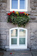 Glass Wall Prints - Flower Box Old Quebec City Print by Edward Fielding