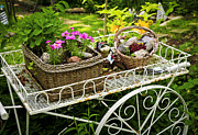 Lush Green Posters - Flower cart in garden Poster by Elena Elisseeva
