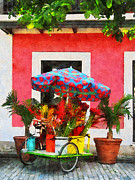 Business Art - Flower Cart San Juan Puerto Rico by Susan Savad
