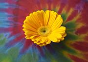 Flower Child Print by Christi Kraft