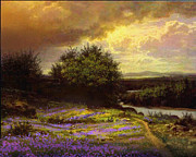 Flower Dell Print by Robert Foster