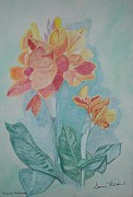 Canna Drawings Posters - Flower Poster by Dianne McDaniel