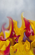 Close Up Floral Mixed Media Posters - Flower Flames Poster by Svetlana Sewell
