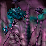 Luminescent Digital Art - Flower Forest by Bonnie Bruno
