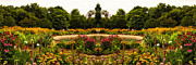 Garden Scene Digital Art Posters - Flower Garden Poster by Thomas Woolworth