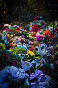 Thrown Away Posters - Flower Graveyard Poster by Melinda Fawver